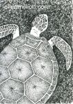 (Tiny) Giant Sea Turtle